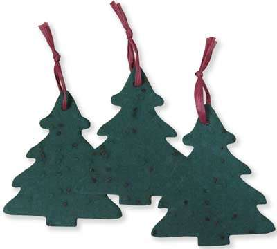Plantable Gift Tags - Santa Claus Goes Green
