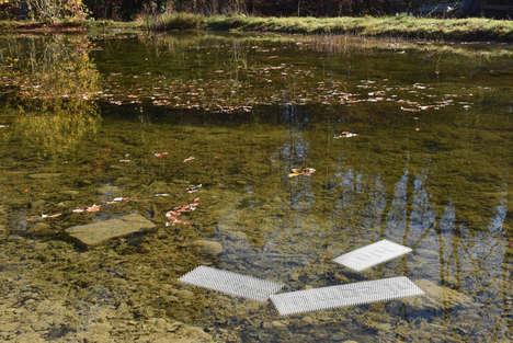 Water-Revealing Haiku Poetry