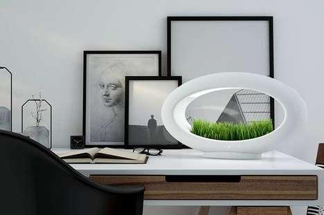 Desktop Succulent Gardens
