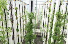 Sustainable Aquaponic Urban Gardens - This Urban Farm Uses Fish Waste to Fertilize Plants