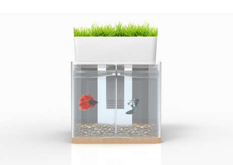 Kitchen Aquaponics Kits