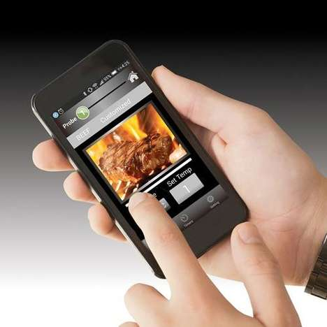 Digital Grill Thermometers