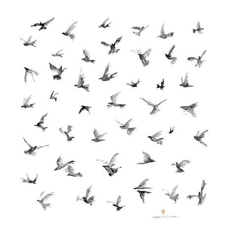 Lyrical Avian Shawls