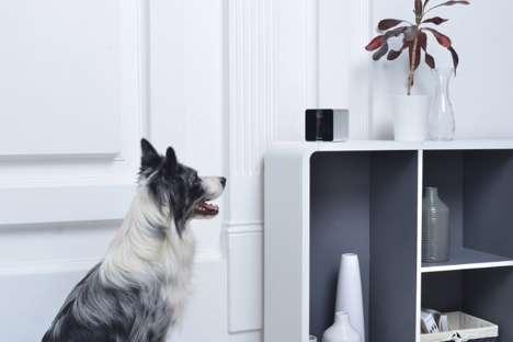Cloud-Based Pet Cameras