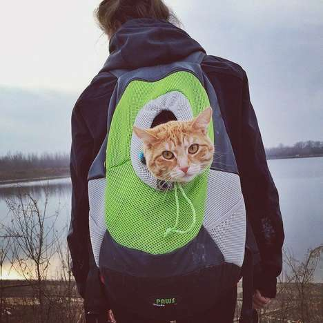 Portable Pet Backpacks