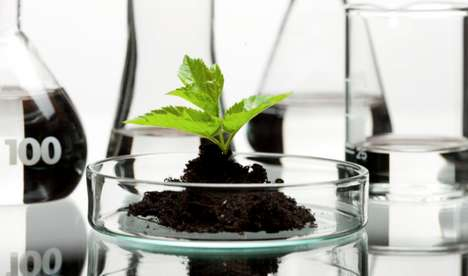 Medical Marijuana Biotech Brands - Potbotics is a Biotech Startup Doing Revolutionary Research