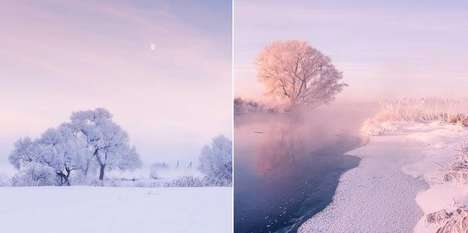 Magical Morning Photography
