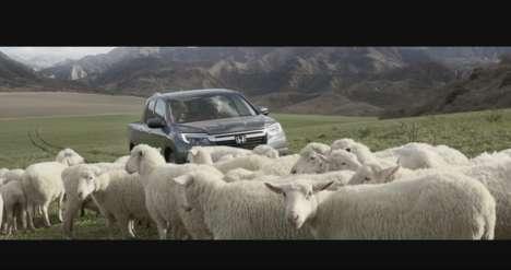 Animal Choir Commercials