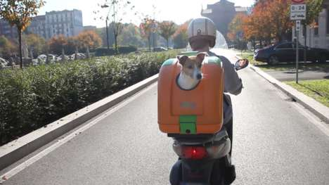 Road-Safe Pet Carriers