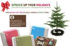 Plantable Packaging - Spruce Trees Sprout from Pangea Organics Boxes