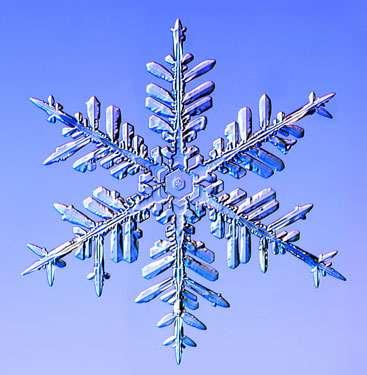 Macro Snow Crystal Photography