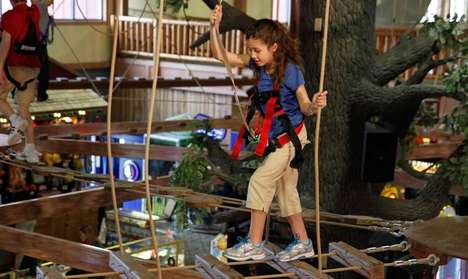 Eco Obstacle Courses - Wilderness Waterpark's Northern Lights Sky Ropes Course is Family-Friendly