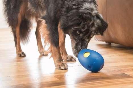 Treat-Dispensing Dog Toys