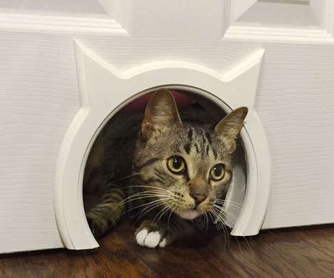 Specialized Feline Doorways
