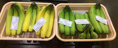 Organic Produce Washes
