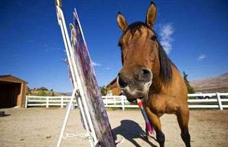Horses That Paint