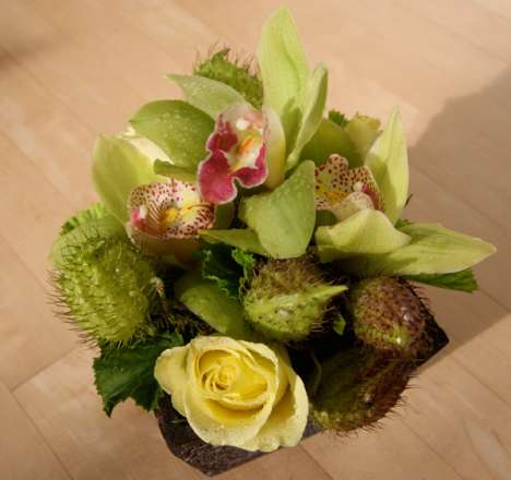 Bizarre Birthday Bouquets