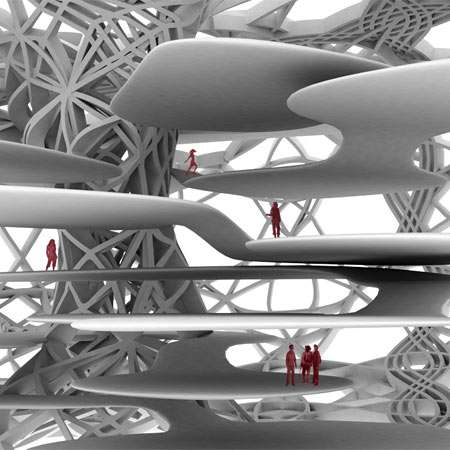 Aortic Architecture