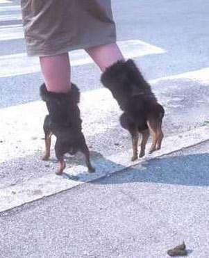 13 Pairs of Badass Boots