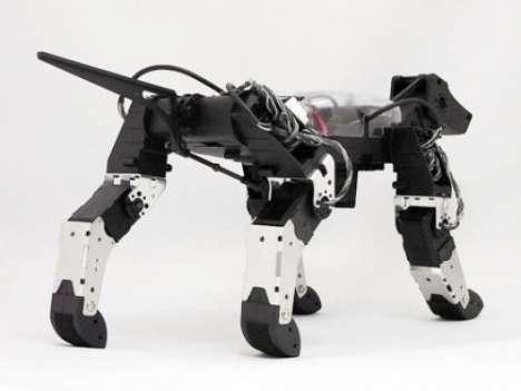 RoboTerriers