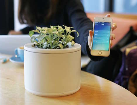 WiFi-Connected Gardening Pots - The 'Planty' Monitors Plant Health to Ensure Healthy Greenery