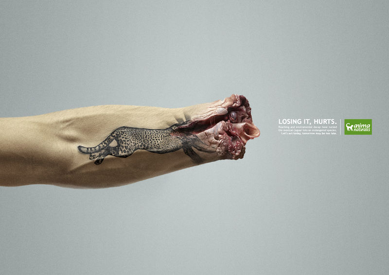 Empathetic Poaching Ads