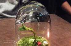 Decieving Dessert Plants - These Desserts Resemble Lifelike Plant Terrariums