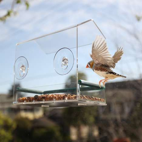 See-Through Window Birdhouses