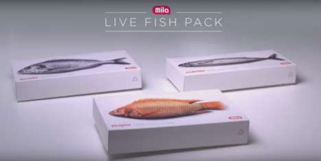 Jumping Fish Packaging