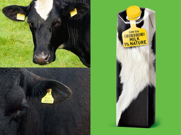28 Dairy-Free Milks