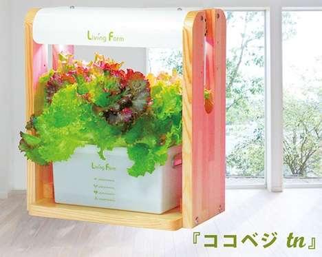 Smart Salad-Growing Gardens