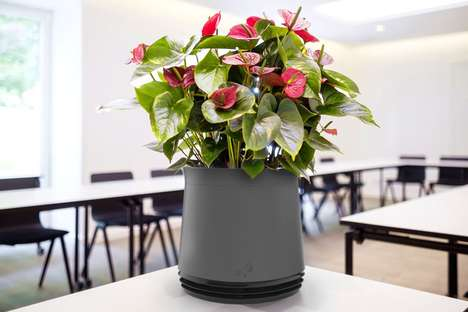 Air-Purifying Plant Pots
