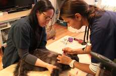 On-Demand Veterinary Services - 'VetEasy' Helps Consumers to Access Veterinary Care