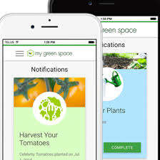 Advisory Garden-Growing Platforms