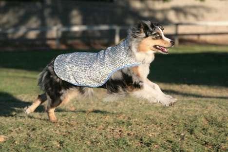 Evaporative Cooling Dog Coats