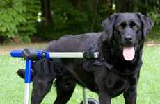 Wheelchairs for Pets - Walkin' Wheels Handicapped Dog Chairs