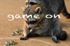Playful Raccoon Portraiture - The 'Game On' Series Features Raccoons Playing a Game of Marbles