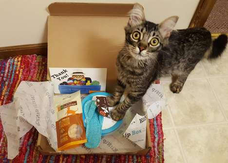 Cat Treat Subscription Boxes - The KitNipBox Provides Cat Owners with Feline-Friendly Treats