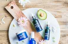 Nutrient-Rich Skincare Collections - The Raw Gaia MSM Organic Beauty Ritual is Organic and Vegan