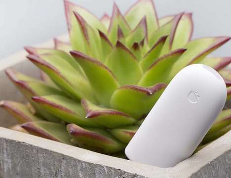 Intelligent Garden Trackers - The Xiaomi Mi Flora Flower and Plant Health Monitor Measures Vitals