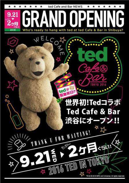 Cinematic Teddy Bear Cafes