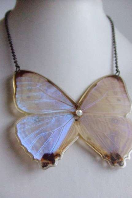 Accessories Made of Real Nature - Perfectly Preserved Flowers and Butterflies by BelaBrazilia