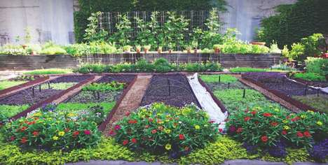 Chef-Curated Urban Gardens