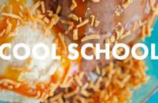 Vegan Ice Cream Schools