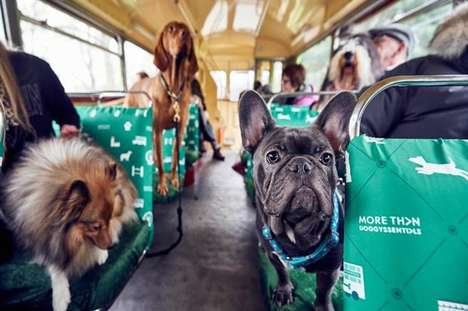 Canine Bus Tours