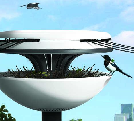Avian Power Line Nests