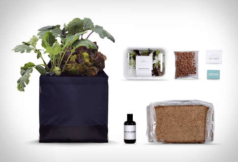 Beginner Urban Garden Kits
