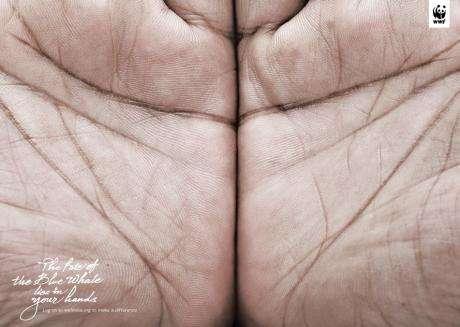 Illusory Handvertising