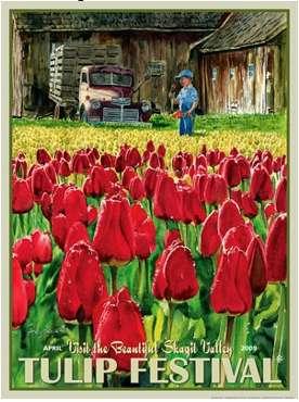 Tulip Trip Tourism