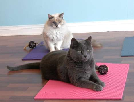 Feline Exercise Mats - The Feline Yogi Cat Yoga Mat Has a Catnip-Filled Toy Attached